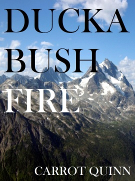 duckabush fire 2