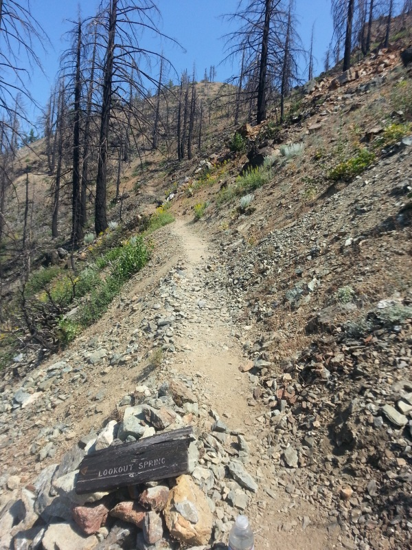 pacific crest trail 498