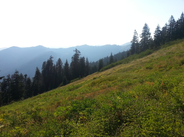pacific crest trail 519