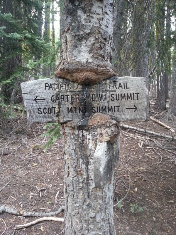 pacific crest trail 615