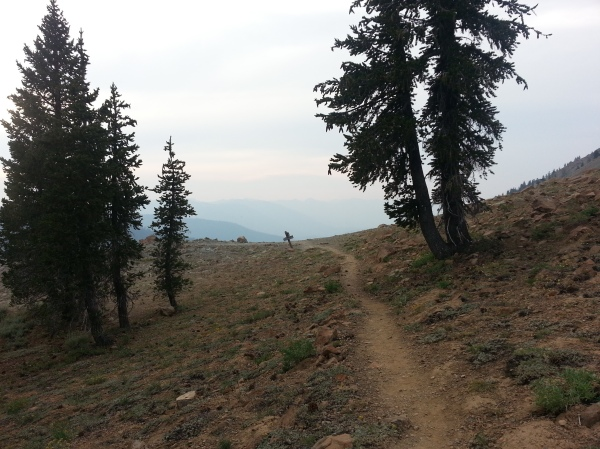 pacific crest trail 619