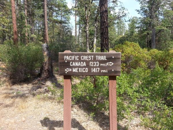 pacific crest trail 766