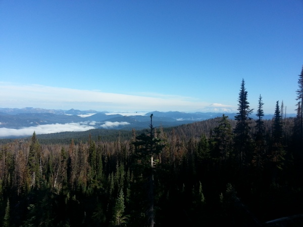 pacific crest trail 3590