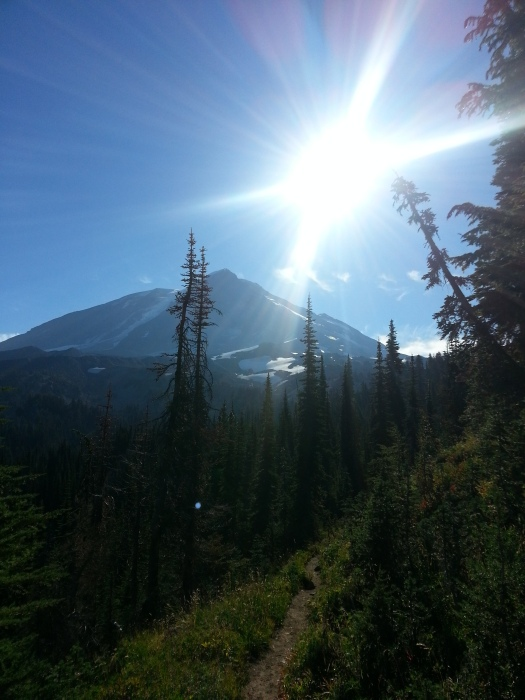 pacific crest trail 3595