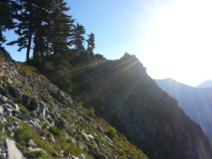 pacific crest trail 3867