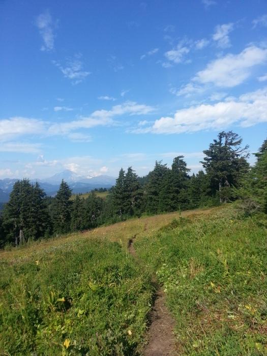 pacific crest trail 4013