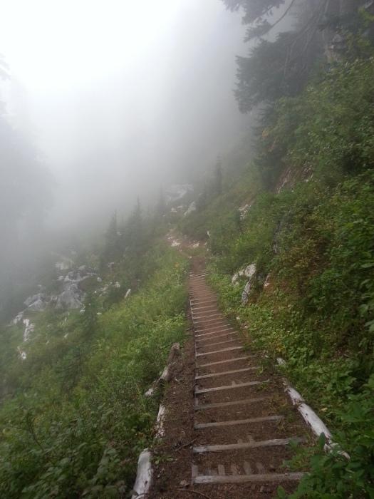 pacific crest trail 4019