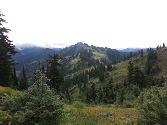 pacific crest trail 4028