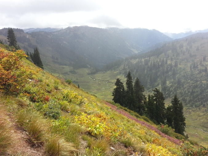 pacific crest trail 4031