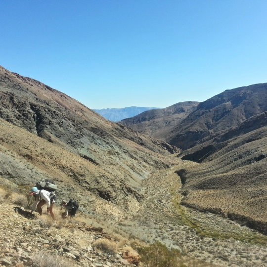 The climb out of Hanaupah canyon
