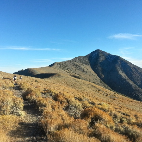 Looking back towards Telescope Peak