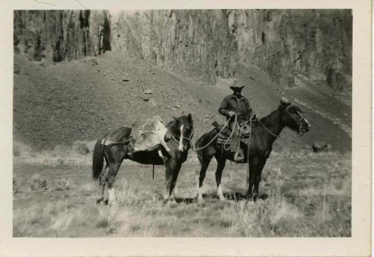 more cowpokes